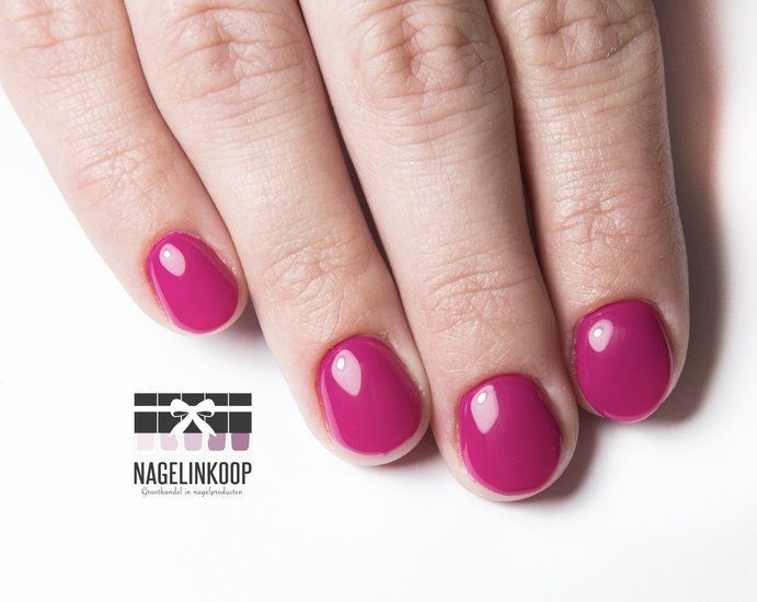 E-Manicure & Perfect Polish   Online Cursus