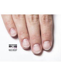 E-Manicure Cursus | Online