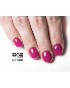 E-Manicure & Perfect Polish | Online Cursus